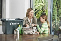 N9 waste removal Lower Edmonton