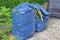 Dagenham recycling expert RM10